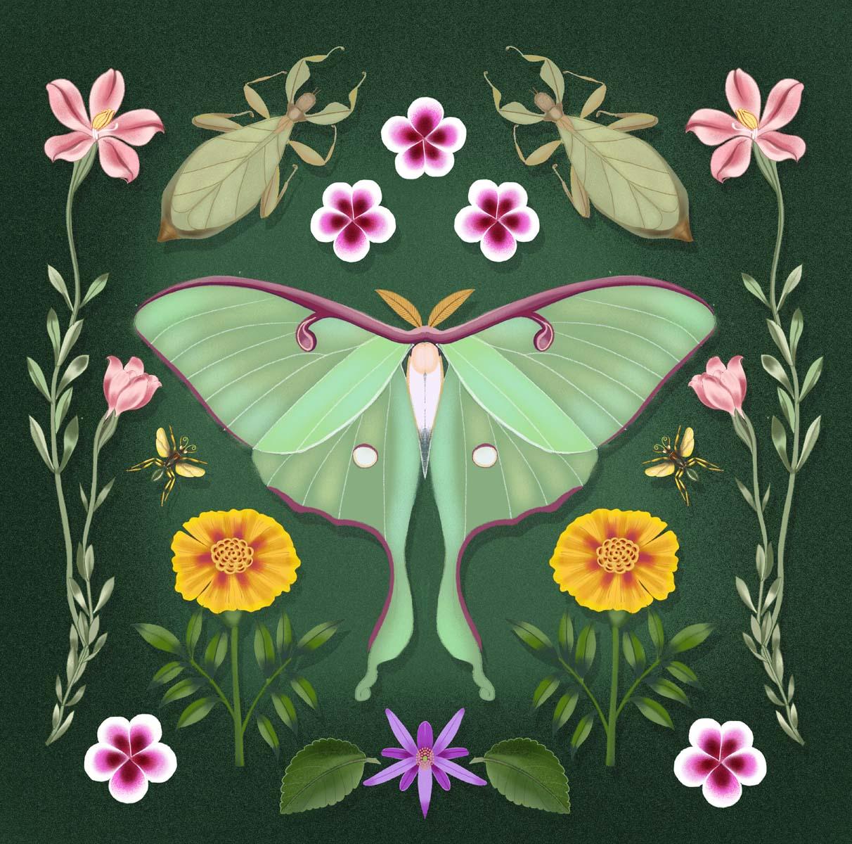 Design with Luna moth