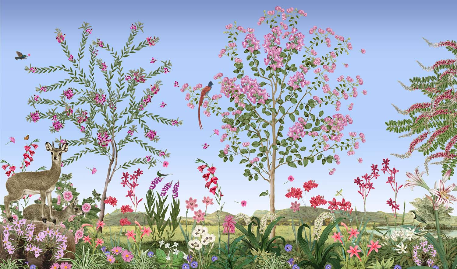 South African landscape with Sweet Pea bush and Klipspringers